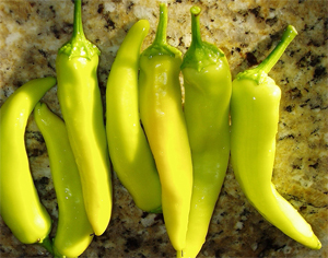 Hungarian Yellow Wax Chile Pepper